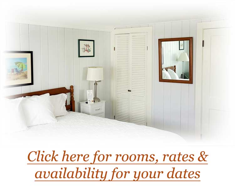 Rooms, Rates & Availability