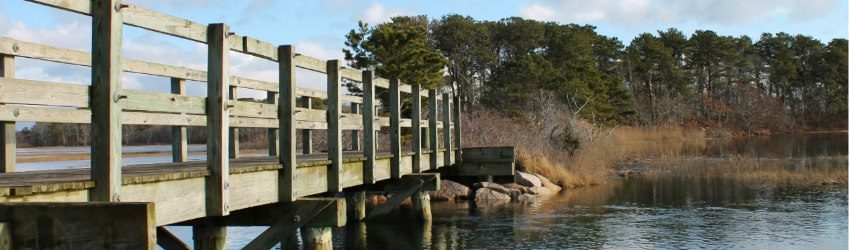 cape cod walking trail