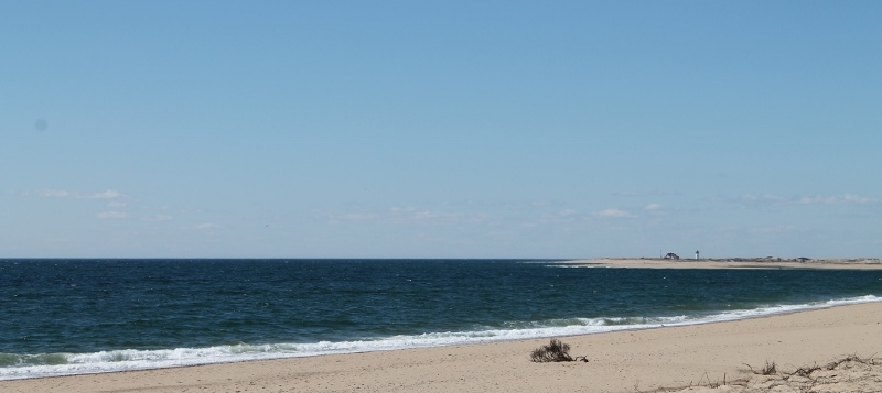 herring cove beach provincetown cape cod