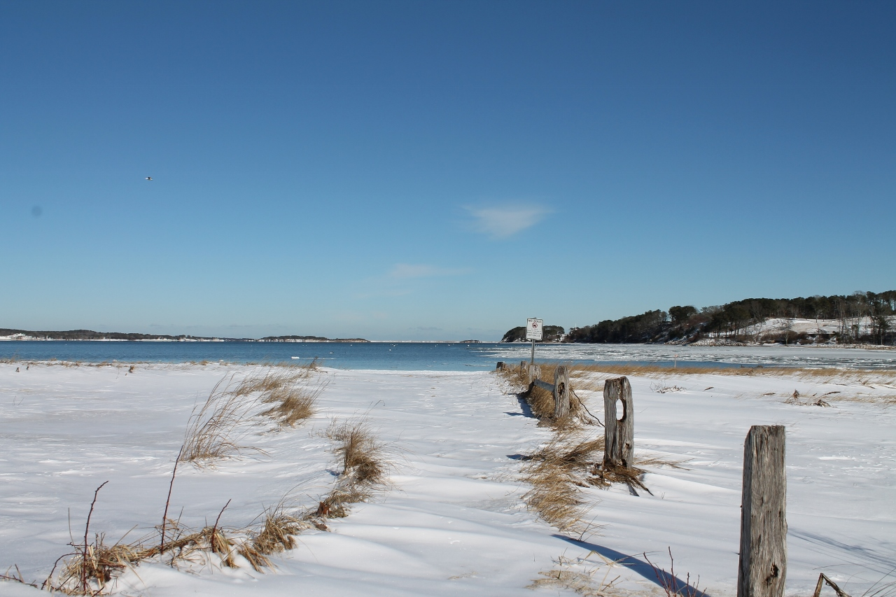What is the best time to visit cape cod seadar inn by - What is a cape cod ...