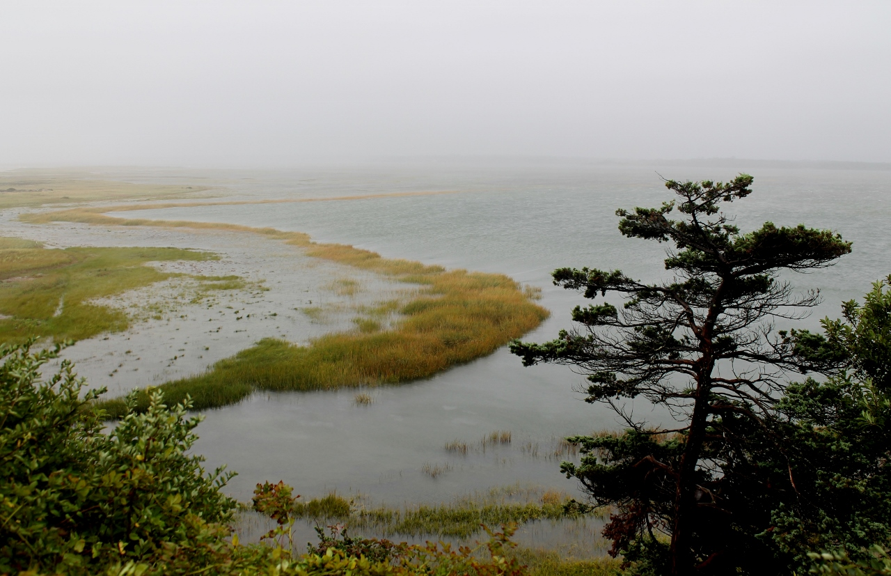 things to do on a rainy day on Cape Cod