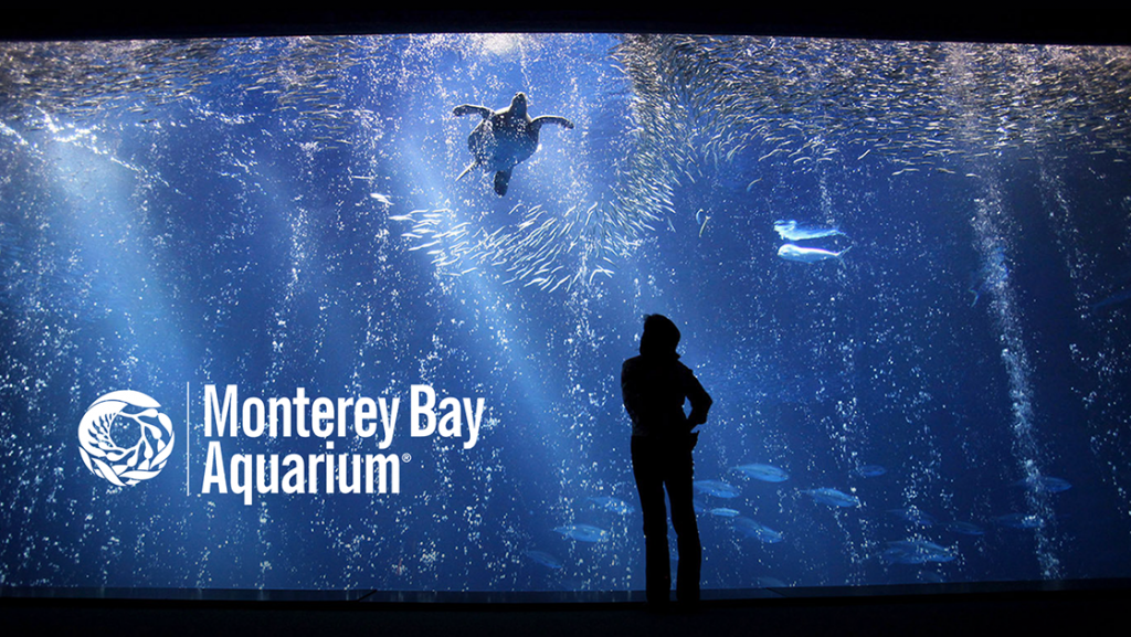Monterey Bay Aquarium; Photo via www.co.monterey.ca.us
