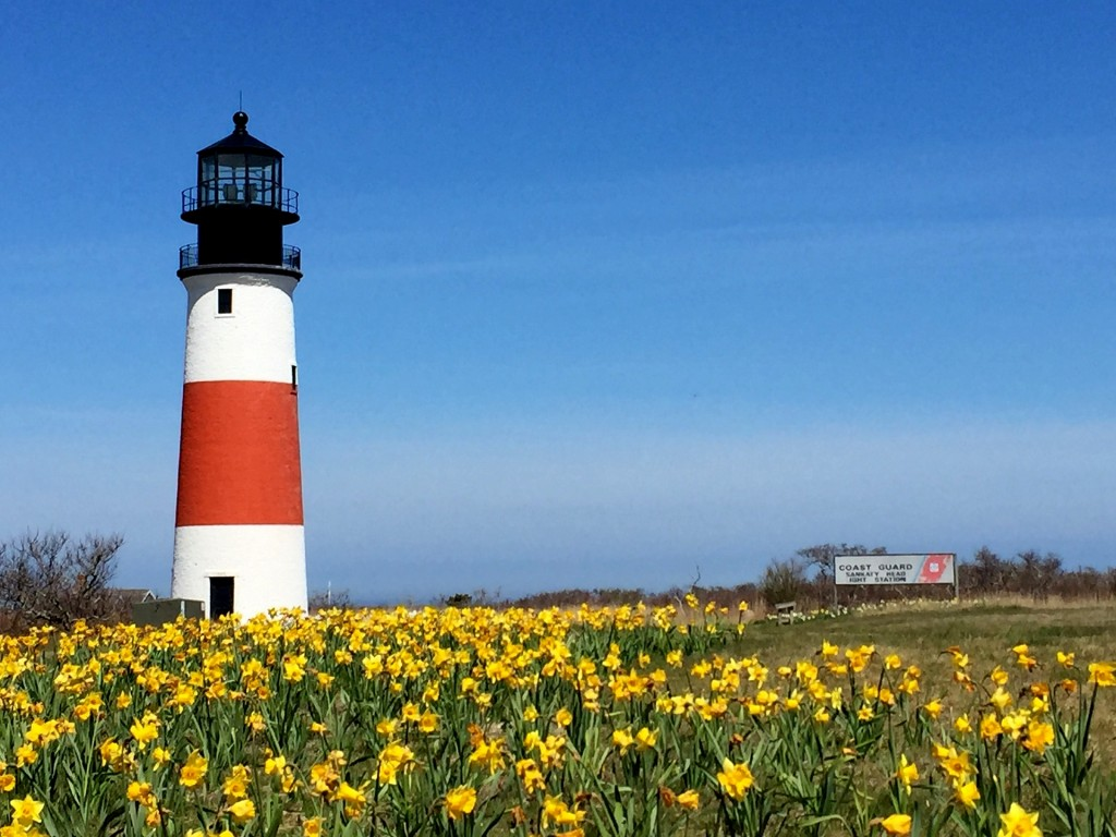 cape cod vacation ideas